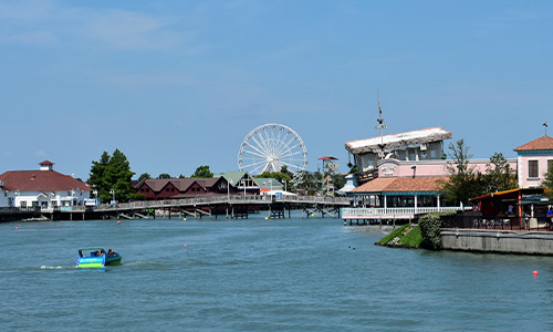 Things To Do In Myrtle Beach SC
